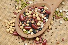 未加工的品种豆和谷物植物木瓢的在大袋背景 免版税库存图片