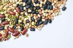未加工的品种豆和谷物种植纹理和背景 免版税库存照片