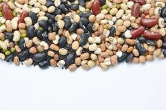 未加工的品种豆和谷物种植纹理和背景 库存图片