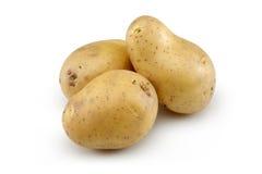 未加工的土豆