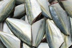 未加工的大眼鲷或成份trevally暗淡的起重器鱼cookin的 免版税库存照片