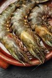 未加工的巨型大虾 免版税库存照片
