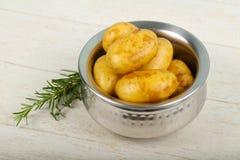 未加工的年轻土豆 免版税图库摄影