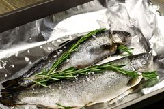 未加工的整个鳟鱼 背景概念藏品查出海螯虾柠檬海鲜白色 免版税库存图片