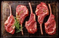 未加工的新鲜的肉小牛肉肋骨 免版税图库摄影