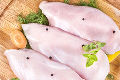 未加工的新鲜的肉鸡火鸡胸脯内圆角 图库摄影