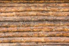 未加工的日志墙壁  免版税图库摄影