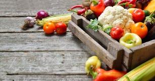 未加工的有机套新鲜蔬菜在树木繁茂的箱子背景中 从庭院的秋天收获,长的横幅 库存照片