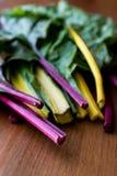 未加工的有机木表面上的彩虹瑞士牛皮菜 免版税库存照片