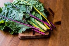 未加工的有机木表面上的彩虹瑞士牛皮菜 库存图片