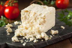 未加工的有机白色希腊白软干酪 免版税库存图片