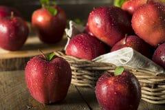 未加工的有机红色美味苹果 免版税图库摄影