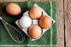 未加工的有机鸡蛋 库存图片