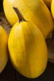 未加工的有机黄色意大利粉南瓜 库存照片
