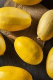 未加工的有机黄色意大利粉南瓜 图库摄影