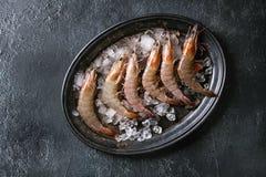 未加工的未煮过的大虾虾 库存照片