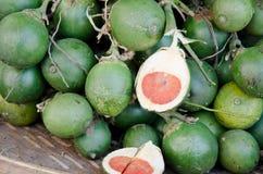 未加工的槟榔子 免版税库存照片