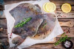 未加工的比目鱼鱼,在木桌上的异体类 图库摄影