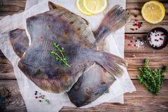 未加工的比目鱼鱼,在木桌上的异体类 免版税图库摄影