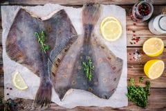 未加工的比目鱼鱼,在木桌上的异体类 库存图片