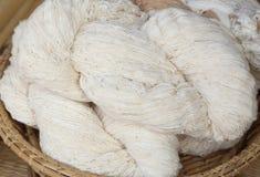 未加工的泰国棉花螺纹 免版税库存照片