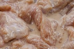 未加工的猪肉切片肉以被发酵的准备好 免版税库存照片