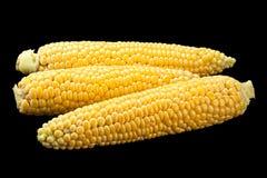 未加工的甜玉米细节 库存照片