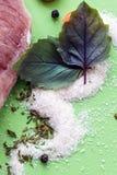 未加工的肉片用香料,与草本特写镜头 免版税库存照片