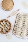 未加工的自创饺子,俄国人Pelmeni演播室照片 免版税图库摄影
