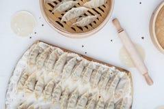 未加工的自创饺子,俄国人Pelmeni演播室照片 库存图片