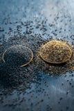 未加工的芥菜籽、Sarso或者rai木表面与黑暗的哥特式颜色,它的植物种子上是矿物的一个富有的来源这样a 免版税库存图片