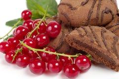 未加工的莓果 免版税库存图片