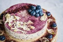 未加工的蓝莓乳酪蛋糕 健康手工制造点心 奶油被装载的饼干 库存照片