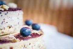 未加工的蓝莓乳酪蛋糕 健康手工制造点心 奶油被装载的饼干 图库摄影