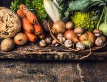 未加工的蔬菜和可食的根各种各样在黑暗的木土气背景 库存照片