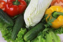 未加工的蔬菜和草本:莴苣,甜椒,黄瓜,大白菜 免版税库存图片