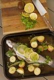 未加工的蔬菜和鳟鱼 库存照片