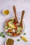 未加工的蔬菜沙拉在油的 库存照片