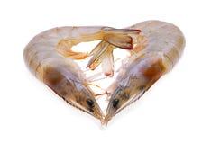 未加工的虾白色背景 免版税库存图片