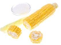 未加工的被剥皮的玉米棒子 图库摄影