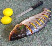 未加工的银色鲤鱼用蕃茄和柠檬 库存照片