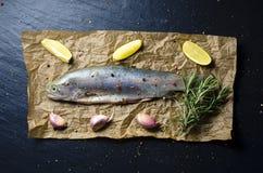 未加工的鳟鱼鱼用柠檬、大蒜、迷迭香和胡椒在黑暗的背景 库存照片