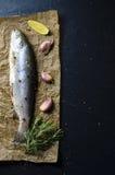 未加工的鳟鱼鱼用柠檬、大蒜、迷迭香和胡椒在黑暗的背景 免版税图库摄影