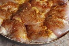 未加工的鸡片断用香料和调味汁 免版税图库摄影