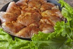 未加工的鸡片断用香料和调味汁 免版税库存照片