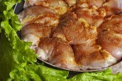 未加工的鸡片断用香料和调味汁 库存图片