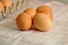 未加工的鸡蛋关闭 图库摄影