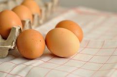 未加工的鸡蛋关闭 免版税库存照片