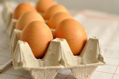 未加工的鸡蛋在箱子关闭 免版税库存图片