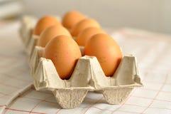 未加工的鸡蛋在篮子关闭 库存图片